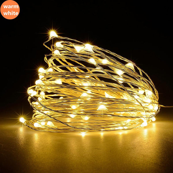 Led Outdoor Christmas Light