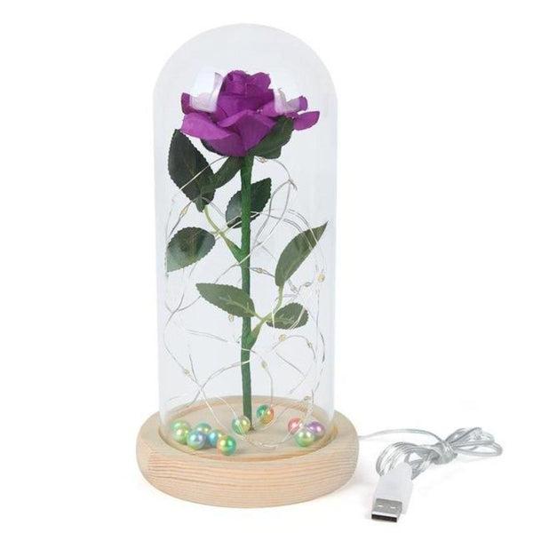 enchanted rose valentine gift