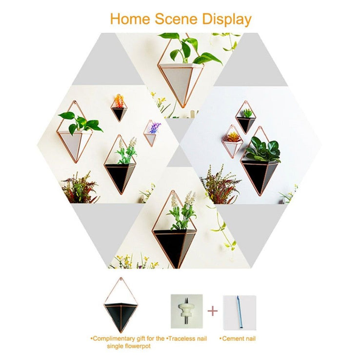 modern wall planters, outdoor and indoor wall planters