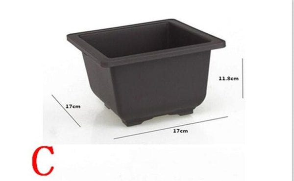 Plastic Balcony Square plastic pots Flower Bonsai Bowl Nursery Basin Planter Imitation Rectangle Flower Pot, bonsai vase for sale, bonsai vaseline, lotus flower, bonsai flowerhorn, bonsai flower seeds, bonsai flower plant, bonsai flower pots, for sale, bonsai flowering tea, bonsai flowering quince, cichlid, bonsai flower lotus flower seeds, bonsai flower shop, tank size, bonsai flower leaf plants, bonsai flowering trees for sale, bonsai flowers lebanon trees, bonsai flower tree online