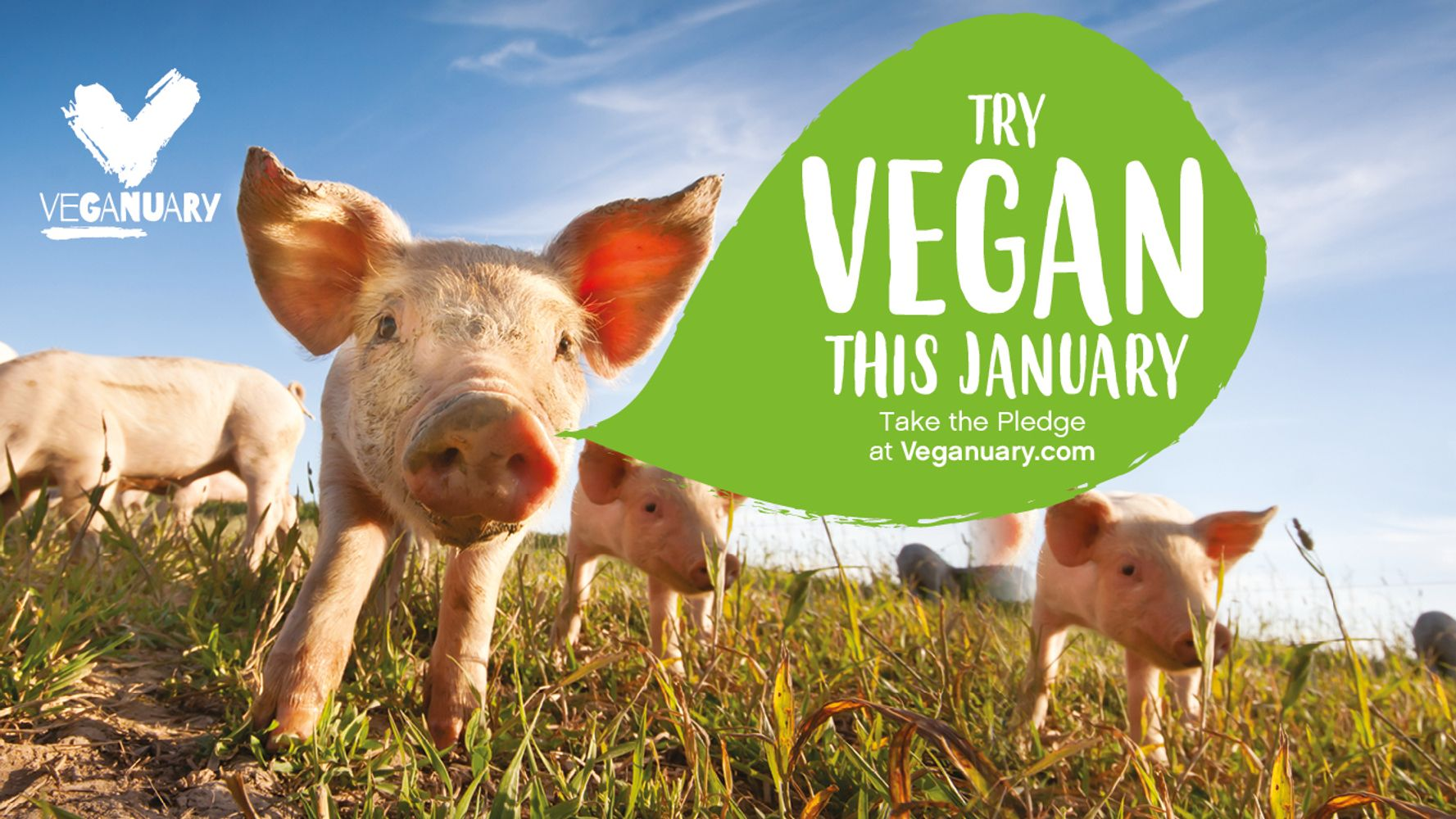 TIPS TO HELP YOU SUCCEED AT VEGANUARY 2021