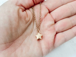 Rose Gold Star & Wing Cremation Urn Necklace