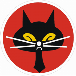 Republic of China (Taiwan) 35th Black Cat Squadron Patch