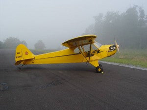 Piper Cub In Fog