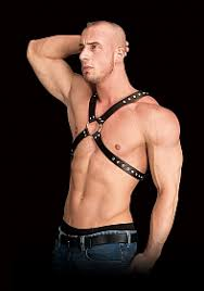 Adonis High Halter Chest Harness Black