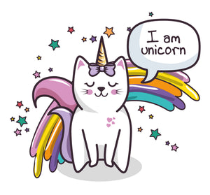 Trousse Cat Unicorn
