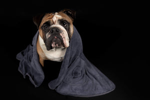 Quick Drying Dog Towel - large