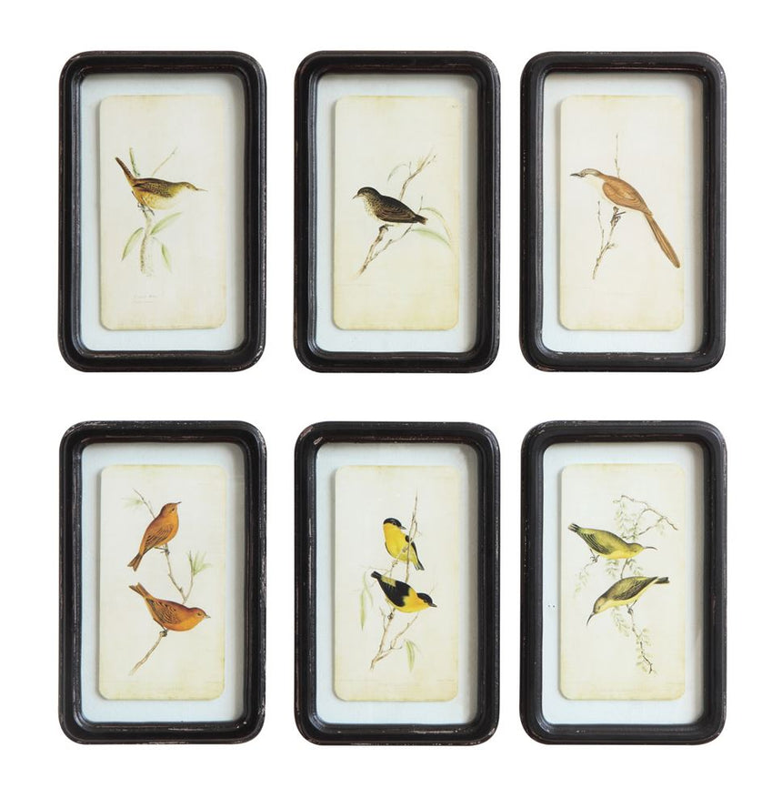 Bird Art distressed Black Frame