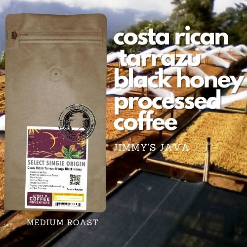 Costa Rican Tarrazu Black Honey Processed Coffee
