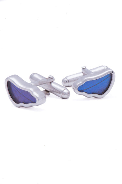 1-Real Butterfly Wings-A-SA-3B-Silver-butterfly-cufflinks-Iridescent-Blue-Wing-Shaped-Morpho-Didius