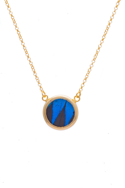 1-Real Butterfly Wings-A-SC-C1-Gold-butterfly-necklace-Royal-Blue-Circle-Papilio-Ulysses