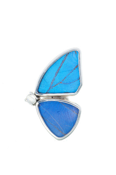 1-Real Butterfly Wings-A-2D-2F-Silver-butterfly-ring-with-blue-topaz-birthstone-Iridescent-Blue-half-Morpho-Didius