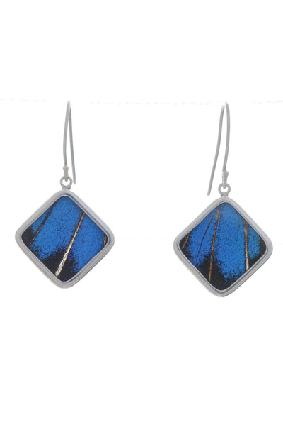 1-Real Butterfly Wings-A-SB-S1-Silver-butterfly-earrings-Royal-Blue-Square-Papilio-Ulysses