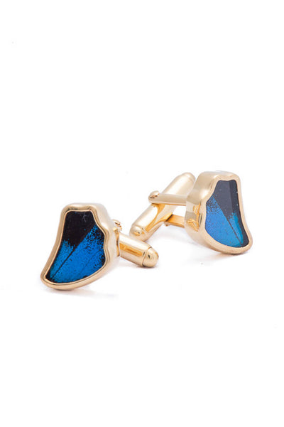 1-Real Butterfly Wings-A-SA-1B-Gold-butterfly-cufflinks-Royal-Blue-Wing-Shaped-Papilio-Ulysses