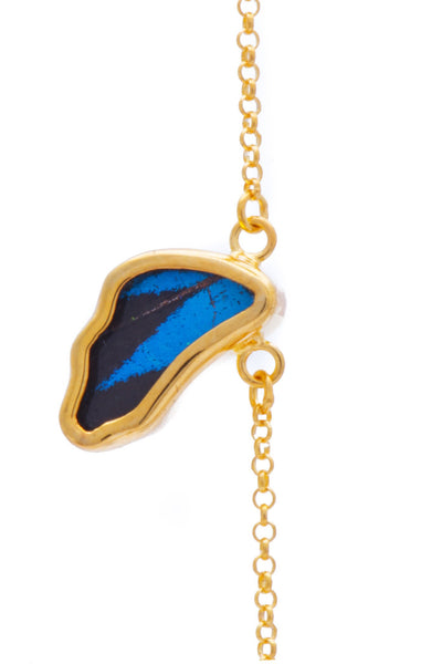 1-Real Butterfly Wings-A-SC-3B-Gold-butterfly-bracelet-Royal-Blue-Wing-Shaped-Papilio-Ulysses