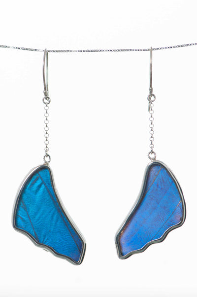 3--A-SB-3B-Silver-butterfly-earrings-Iridescent-Blue-Wing-Shaped-Morpho-Didius