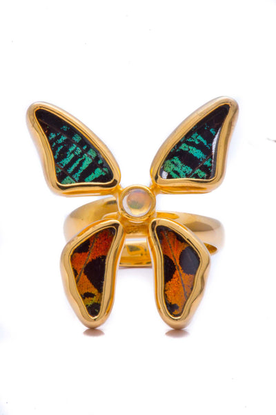 1-Real Butterfly Wings-A-4D-3F-Gold-butterfly-ring-with-citrine-birthstone-Shimmering-Rainbow-Green-Chrysiridia-Madagascarien
