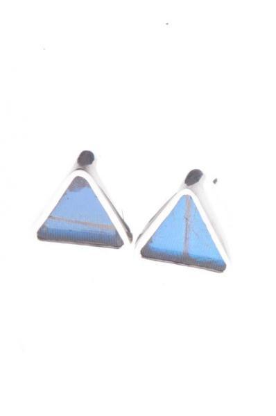 1-Real Butterfly Wings-A-SA-T1-Silver-butterfly-earrings-Iridescent-Blue-Triangle-Morpho-Didius