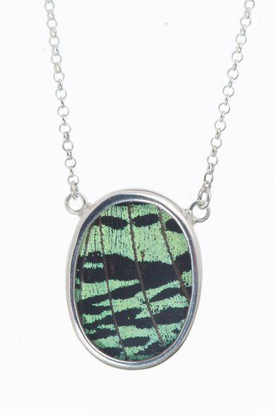 1-Real Butterfly Wings-A-SC-O1-Silver-butterfly-necklace-Shimmering-Green-Oval-Chrysiridia-Madagascariensis-Top-wing