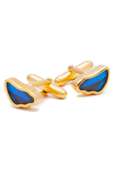 1-Real Butterfly Wings-A-SA-3B-Gold-butterfly-cufflinks-Royal-Blue-Wing-Shaped-Papilio-Ulysses
