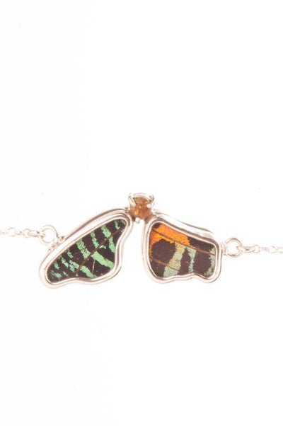 1-Real Butterfly Wings-A-2F-5F-Silver-butterfly-bracelet-with-citrine-birthstone-Shimmering-Rainbow-Green-half-Chrysiridia-Ma
