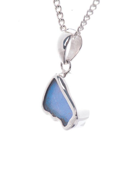 1-Real Butterfly Wings-A-SB-3A-Silver-butterfly-pendant-Iridescent-Blue-Wing-Shaped-Morpho-Didius