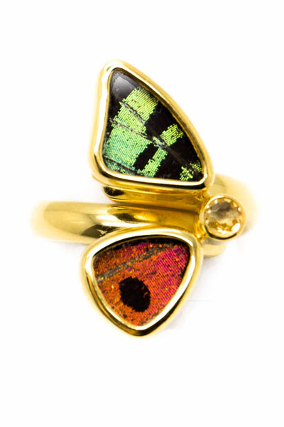 1-Real Butterfly Wings-A-2D-2F-Gold-butterfly-ring-with-citrine-birthstone-Shimmering-Rainbow-Green-half-Chrysiridia-Madagasc