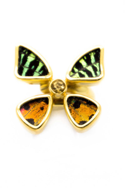 1-Real Butterfly Wings-A-4D-2F-Gold-butterfly-ring-with-citrine-birthstone-Shimmering-Rainbow-Green-Chrysiridia-Madagascarien
