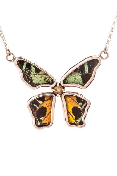 1-Real Butterfly Wings-A-4B-5F-Silver-butterfly-necklace-with-citrine-birthstone-Shimmering-Rainbow-Green-Chrysiridia-Madagas