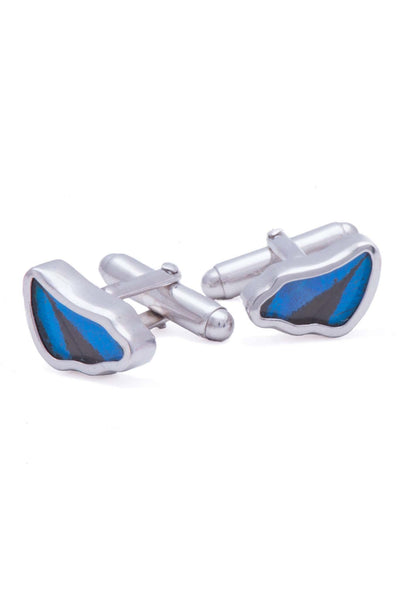 1-Real Butterfly Wings-A-SA-3B-Silver-butterfly-cufflinks-Royal-Blue-Wing-Shaped-Papilio-Ulysses