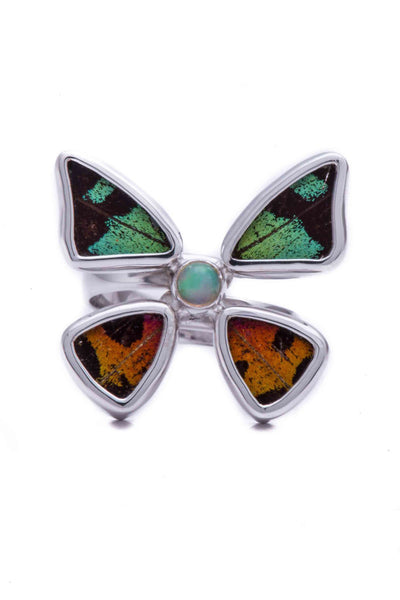 1-Real Butterfly Wings-A-4D-2F-Silver-butterfly-ring-with-citrine-birthstone-Shimmering-Rainbow-Green-Chrysiridia-Madagascari