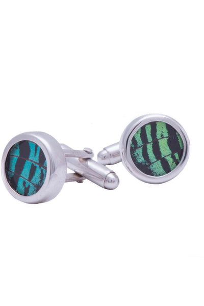 1-Real Butterfly Wings-A-SA-C1-Silver-butterfly-cufflinks-Shimmering-Green-Circle-Chrysiridia-Madagascariensis-Top-wing
