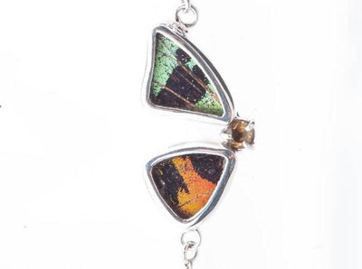 1-Real Butterfly Wings-A-2F-2F-Silver-butterfly-bracelet-with-citrine-birthstone-Shimmering-Rainbow-Green-half-Chrysiridia-Ma