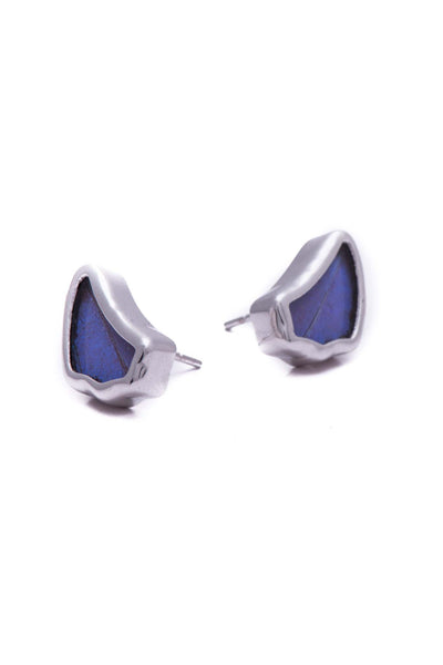 1-Real Butterfly Wings-A-SA-1B-Silver-butterfly-earrings-Iridescent-Blue-Wing-Shaped-Morpho-Didius