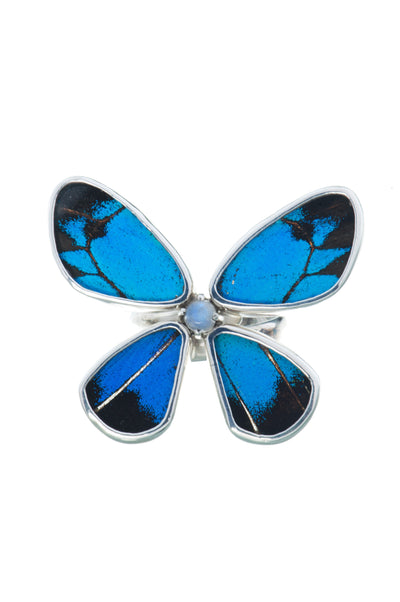 1-Real Butterfly Wings-A-4D-6F-Silver-butterfly-ring-with-blue-topaz-birthstone-Royal-Blue-Papilio-Ulysses