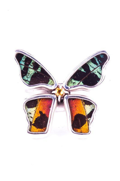 1-Real Butterfly Wings-A-4D-5F-Silver-butterfly-ring-with-citrine-birthstone-Shimmering-Rainbow-Green-Chrysiridia-Madagascari