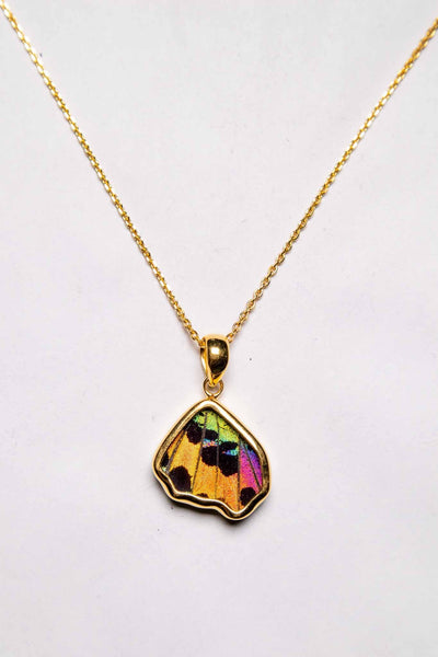 1-Real Butterfly Wings-A-SB-5B-Gold-butterfly-pendant-Shimmering-Rainbow-Wing-Shaped-Chrysiridia-Madagascariensis-Bottom-wing