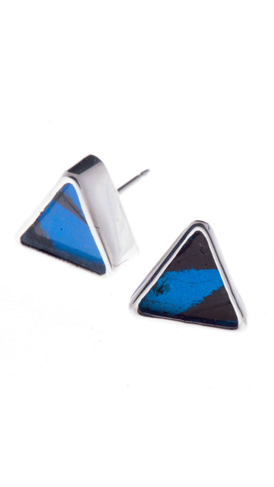 1-Real Butterfly Wings-A-SA-T1-Silver-butterfly-earrings-Royal-Blue-Triangle-Papilio-Ulysses