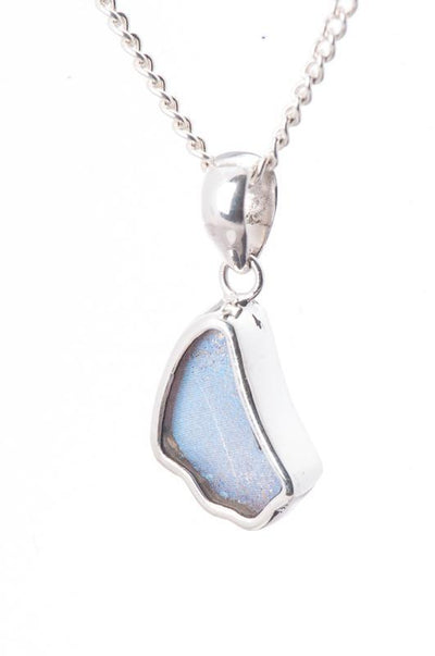 1-Real Butterfly Wings-A-SB-1B-Silver-butterfly-pendant-Iridescent-Blue-Wing-Shaped-Morpho-Didius