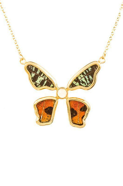 1-Real Butterfly Wings-A-4B-5F-Gold-butterfly-necklace-with-citrine-birthstone-Shimmering-Rainbow-Green-Chrysiridia-Madagasca