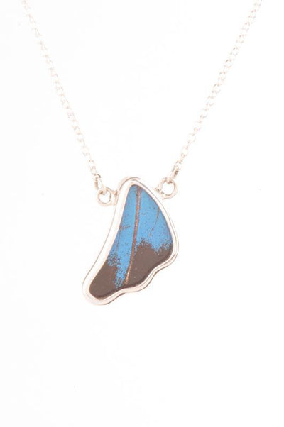 1-Real Butterfly Wings-A-SC-3B-Silver-butterfly-necklace-Royal-Blue-Wing-Shaped-Papilio-Ulysses