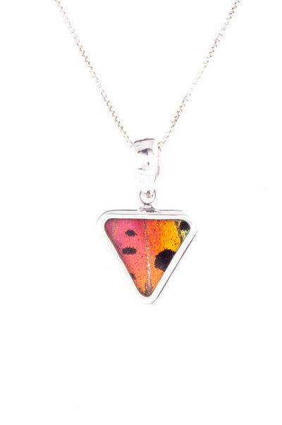 1-Real Butterfly Wings-A-SB-T1-Silver-butterfly-pendant-Shimmering-Rainbow-Triangle-Chrysiridia-Madagascariensis-Bottom-wing
