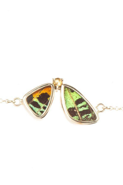 1-Real Butterfly Wings-A-2F-6F-Silver-butterfly-bracelet-with-citrine-birthstone-Shimmering-Rainbow-Green-half-Chrysiridia-Ma