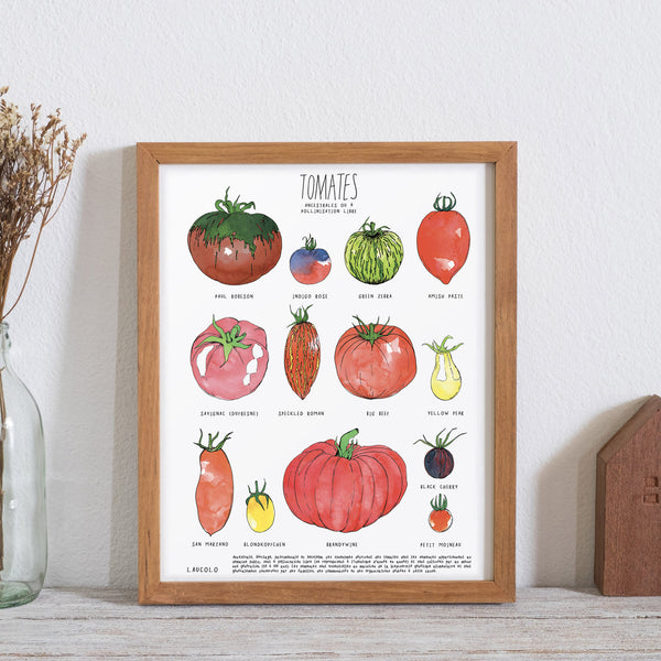 Affiche - Tomates