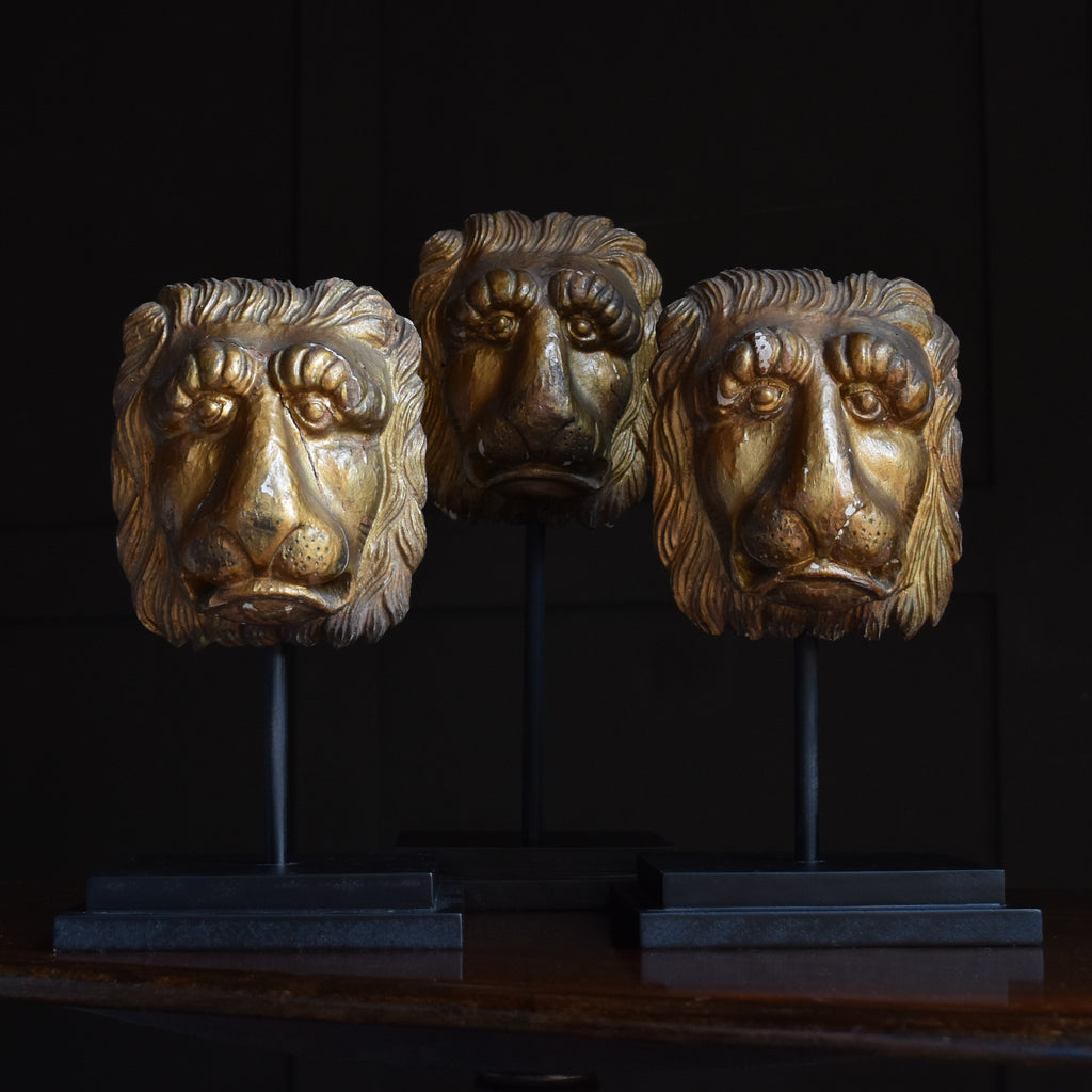 Three 19th Century Italian Gilt wood Lion Masks on Stands.