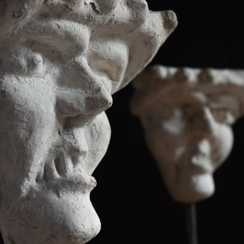 A Pair of 19th Century Grotesque Plaster Heads on Stands.
