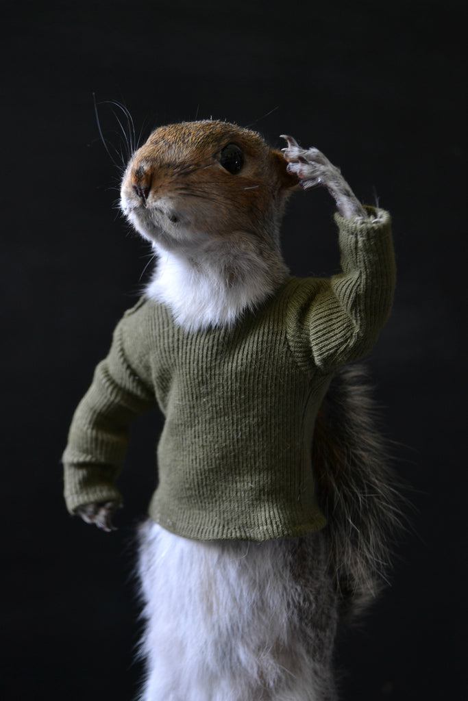 Salute! Soldier Squirrel. - Hunter and Rose