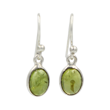 Load image into Gallery viewer, Simple Oval Shaped Drop Earring