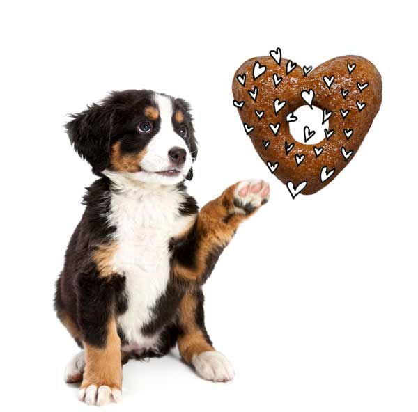 Heart-shaped dog food