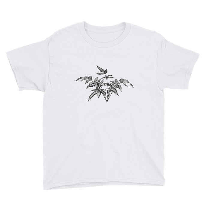 Pteris Fern Kid's Tee